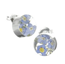 Forget-Me-Not Flower Round Stud Earrings - Sterling 925 Silver