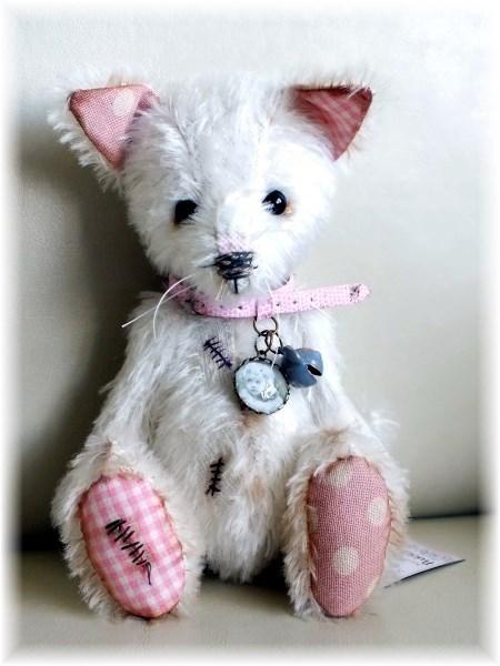 Purrdy - The Cute Cat/Kitten - ADOPTED