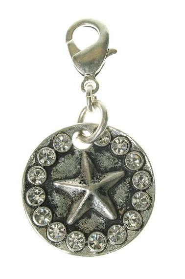 A & C - Star Disc Clasp-On Charm Silver Plate