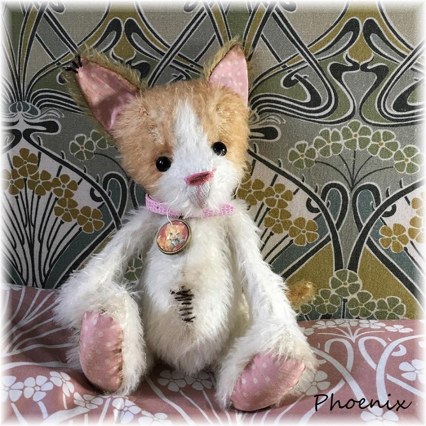 Phoenix - Ginger & White Kitten ADOPTED