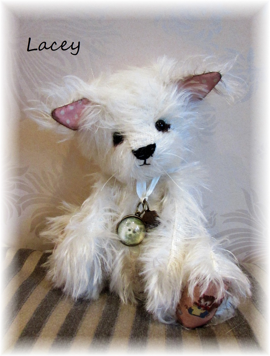 Lacey - White Persian Cat - She's Such a Sophisti-cat! - ADOPTED