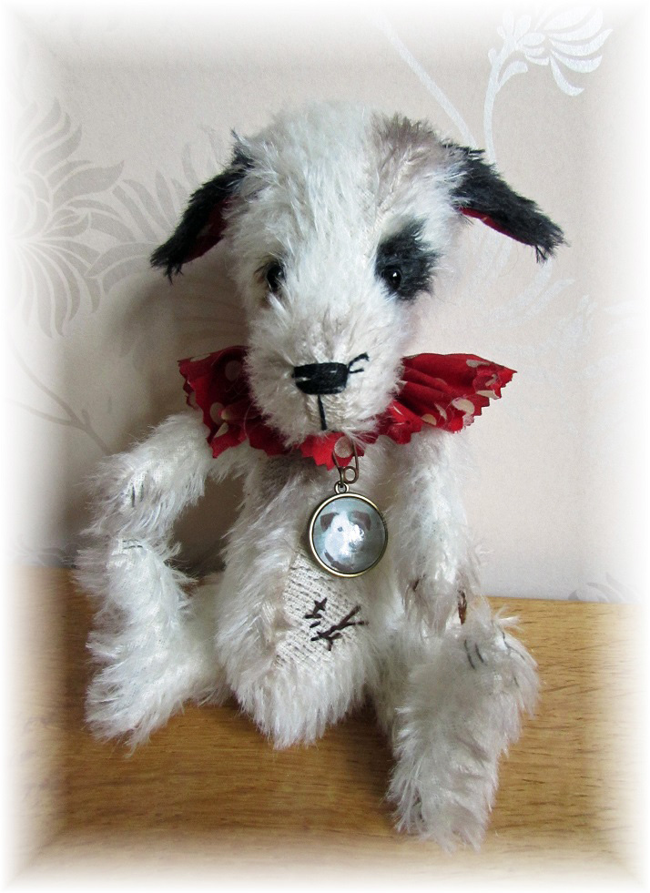 Sprocket - Retired Performing Circus Jack Russell Dog